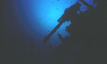Anti Aircraft Gun on the Thistlegorm wreck